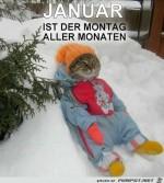 Januar.......jpg auf www.funpot.net