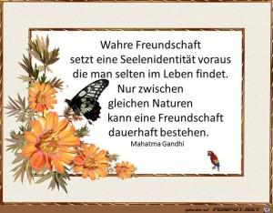 Wahre-Freundschaft-1.jpg auf www.funpot.net