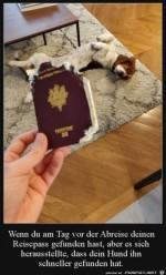 Dein-Hund-hat-deinen-Pass-gefunden.jpg auf www.funpot.net