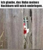 Gefährliches-Huhn.jpg auf www.funpot.net