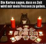Zeit-für-das-Fressen-der-Katze.jpg auf www.funpot.net