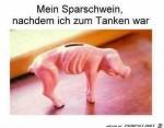 mein-Sparschwein.jpg auf www.funpot.net