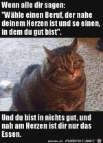 Katze-guckt-bedrückt.jpg auf www.funpot.net