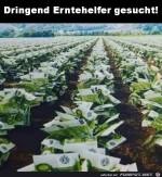 Dringend-Erntehelfer-gesucht.jpg auf www.funpot.net