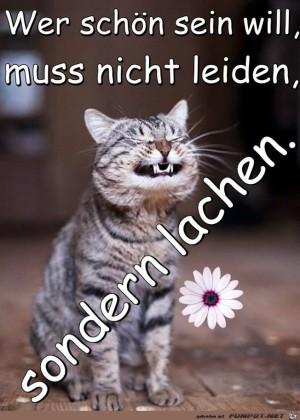 Wer-schoen-sein-will.jpg auf www.funpot.net
