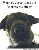 Ausversehen.jpg auf www.funpot.net
