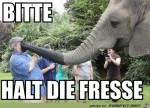 bitte-halt-die-Fr.....jpg auf www.funpot.net