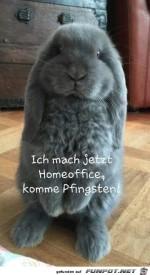 ichmach-jetzt-homeoffice.jpg auf www.funpot.net