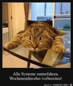 Alle-Systeme-runterfahren,-Wochenendmodus-vorbereiten-.jpg auf www.funpot.net