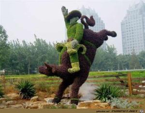 Gartenkunst - oder die Kunst mit Pflanzen umzugehen 29