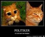 Politiker.jpg auf www.funpot.net