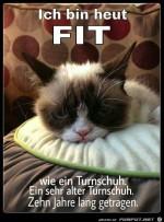 Bin-fit.jpg auf www.funpot.net