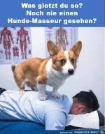 Noch-nie-einen-Hunde-Masseur-gesehen?.jpg auf www.funpot.net