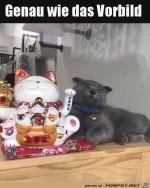 Katze-guckt-wie-ihr-Vorbild.jpg auf www.funpot.net