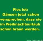 25.jpg auf www.funpot.net