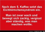 Eichhörnchen-Syndrom.jpg auf www.funpot.net