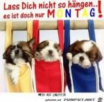 Lass-dich-nicht-so-haengen.jpg auf www.funpot.net