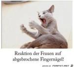 Reaktion-der-Frauen.jpg auf www.funpot.net