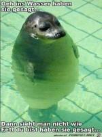 Geh-ins-Wasser.jpg auf www.funpot.net