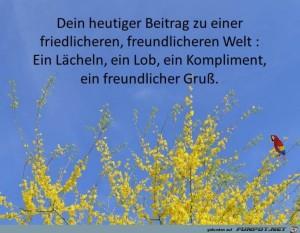Dein-heutiger-Beitrag.jpg auf www.funpot.net