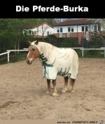 Pferde-Burka.png auf www.funpot.net