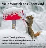 Mein-Wunsch-ans-Christkind.jpg auf www.funpot.net