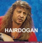 Hairdogan.jpg auf www.funpot.net