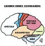 Schwaben-Hirn.jpg auf www.funpot.net