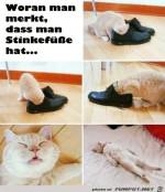 Dein-Schuhe-miefen.jpg auf www.funpot.net