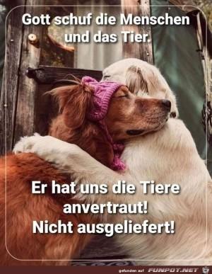 Man-hat-uns-die-Tiere-anvertraut.jpg auf www.funpot.net