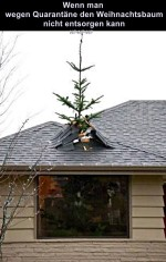 Weihnachtsbaum-konnte-nicht-entsorgt-werden.jpg auf www.funpot.net