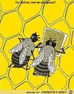 Bienen-mit-stadtplan.jpg auf www.funpot.net
