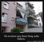 Ziemlich-großer-String.jpg auf www.funpot.net
