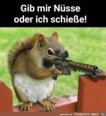 Her-mit-den-Nüssen.png auf www.funpot.net