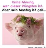 Der-Pfingstmontag-gefällt-mir.jpg auf www.funpot.net