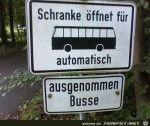 Busse.jpg auf www.funpot.net