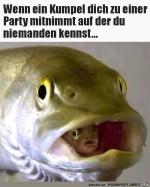 wenn-dein-Kumpel-dich-zu-einer-Party-mitnimmt.jpg auf www.funpot.net