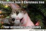 Der-Weihnachtsschmuck-ist-Geschichte.jpg auf www.funpot.net
