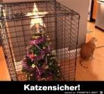 Katzensicher.png auf www.funpot.net