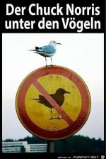 Was-juckt-mich-das-Schild.jpg auf www.funpot.net