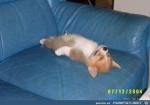 ATT000258.jpg auf www.funpot.net