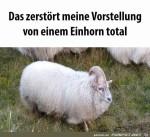Komisches-Einhorn.jpg auf www.funpot.net