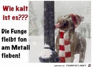 Es-ist-ziemlich-kalt.jpg auf www.funpot.net