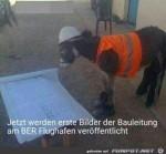 Neues-Foto-der-Bauleitung-BER-aufgetaucht.jpg auf www.funpot.net