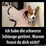 Warum-freust-du-dich-nicht?.jpg auf www.funpot.net