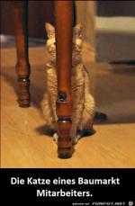 Katze.png auf www.funpot.net