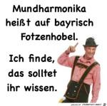 Mundharmonika-auf-bayrisch.jpg auf www.funpot.net