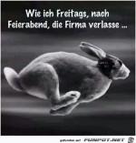 Freitags-die-Frima-verlassen.jpg auf www.funpot.net