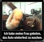 Das-Auto-winterfest-machen.jpg auf www.funpot.net