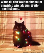 Weihnachtsbaum.png auf www.funpot.net